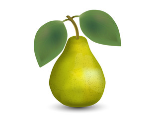 Realistic Pear Isolated on White Background.