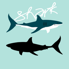 Shark color vector illustration style Flat profile black silhouette