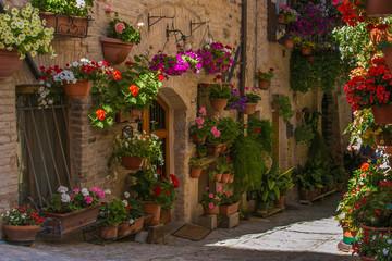 Vicolo fiorito di un borgo medievale italiano