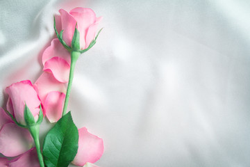 bouquet sweet pink roses  petal on  soft white silk fabric , romance and love card concept