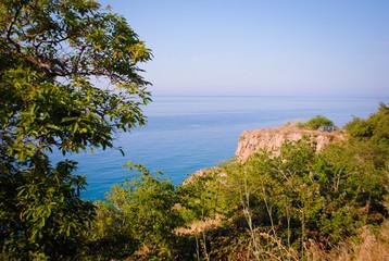Gran árbol, mar azul