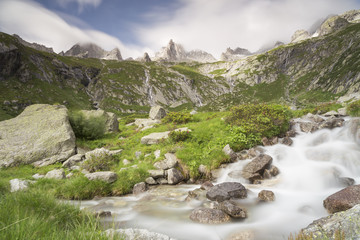 A misty Stream running through the Masino Valley, Pizzo Porcellizzo, Italy