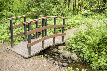 Trail leads to a small wooden bridge over a stream in summer forest.