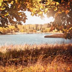 Zelfklevend Fotobehang Diepbruine autumn landscape