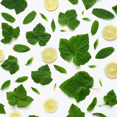 Pattern of mint, lemon and currant leaves. Food background with citrus. Mint leaves, currant leaves and  lemon slices isolated on white background.