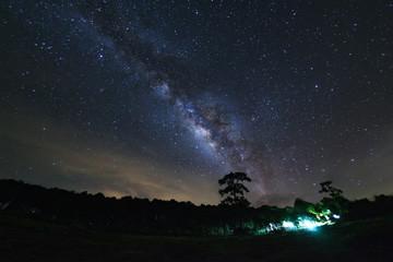 Milky Way and silhouette of tree at Phu Hin Rong Kla National Park,Phitsanulok Thailand, Long exposure photograph.with grain