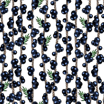 Vector hand drawn seamless pattern of isolated acai branches. Engraved colored art. Delicious tropical vegetarian fruits.
