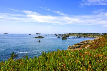 View of the Pacific coast near Crescent City, California, USA