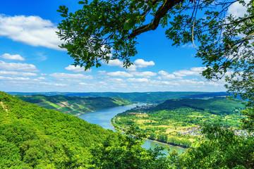 Blick auf die Rheinschleife am Mittelrhein