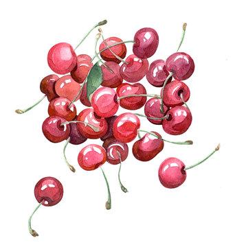cherries, watercolor hand painted illustration, isolated clip-art for menu, fresh bar design, cherries print