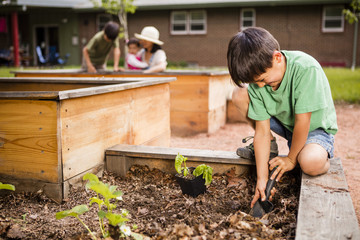 Japanese American boy helping his mom planting flowers in garden