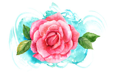 Watercolor pink rose drawing on turquoise brush stroke