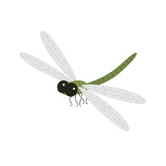 Cartoon beautiful dragonfly