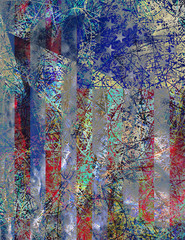 Amercain Abstract