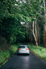 Lonely isolated car, with parked signal lights on is parked in middle of narrow forest road