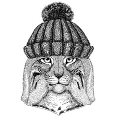 Wild cat Lynx Bobcat Trot wearing winter knitted hat