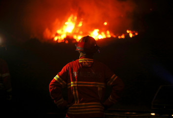A firefighter watches an approaching forest fire in Carvalho
