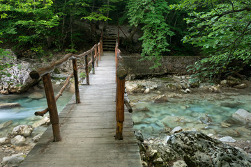 Wooden bridge over the mountain stream in the forest