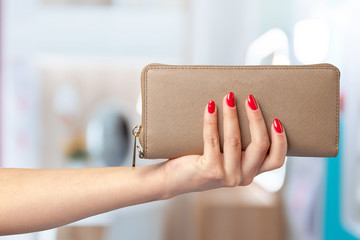 woman wallet in hand