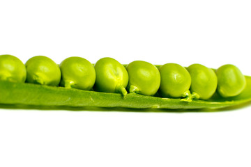 A lot of peas in a pod