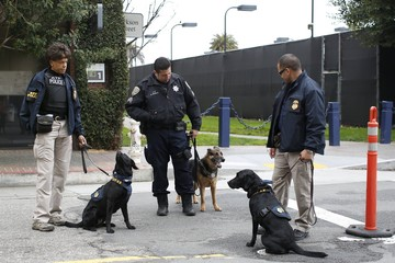 K-9 units of the U.S. Bureau of Alcohol, Tobacco, Firearms and Explosives (ATF) inspect vehicles for explosives outside Super Bowl City during a capability demonstration in San Francisco, California