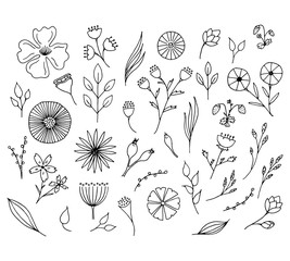 Hand drawn floral elements. Isolated doodle flowers.