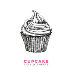 Vector hand drawn cupcake Illustration.