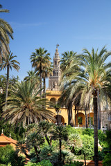 Spain, Andalusia, Seville, Barrio Santa Cruz, Alcazar Palace