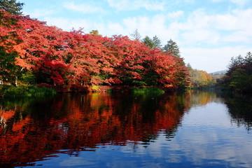 Autumn landscape of Kumoba pond, Karuizawa, Nagano, Japan