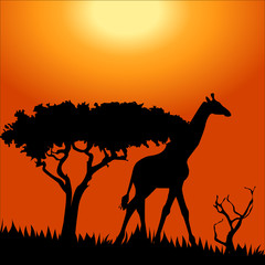 Africa safari - silhouettes of wild animals