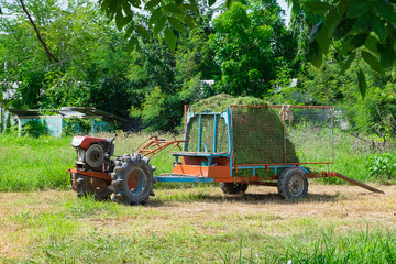 Old tractor with grass or hay on trailer. agriculture vehicle.