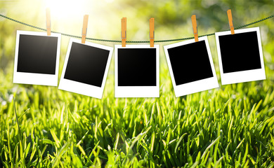 Nature background with green grass and photos on rope