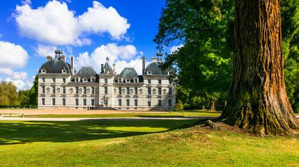 Fotobehang Kasteel Elegant Cheverny castle, most well preserved castle in Loire valley. France