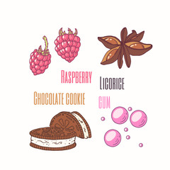 Set of sweet toppings anise, raspberry, chocolate cookie and bubble gum. Hand drawn food