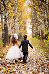 Little boy and girl go on the road in autumn in a Park with a suitcase, and the outfits of the bride and groom.