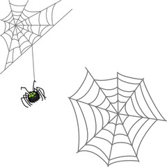 Spider and web. Halloween icon isolated on white background