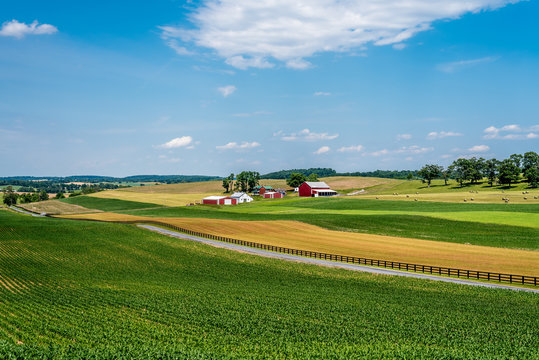 Maryland Farm Land