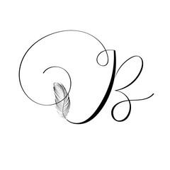 Hand drawn letter B in modern calligraphy style. Boho art print with decorative feathers.