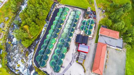 Salmon fish farm. Norway