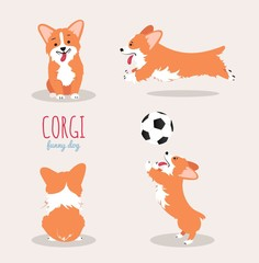 Cute Welsh Corgi Pembroke cartoon set. Vector illustration