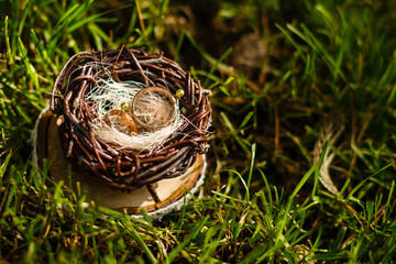 Pair of wedding rings laying in nest. Wedding decoration. Symbol of family, togetherness and love