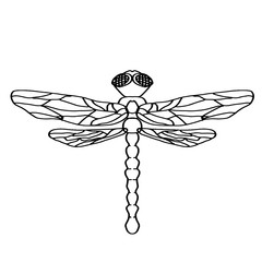 dragonfly coloring