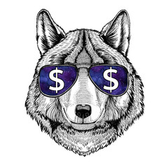 Wolf Dog wearing glasses with dollar sign Illustration with wild animal for t-shirt, tattoo sketch, patch