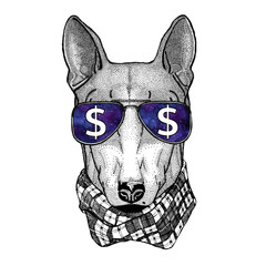 DOG for t-shirt design wearing glasses with dollar sign Illustration with wild animal for t-shirt, tattoo sketch, patch