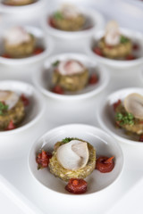 Variety of finger food on catering event