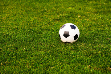 Soccer ball on the grass before the game