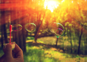 soap bubbles into the sunset with beautiful bokeh.