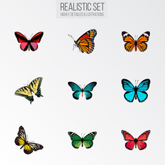 Realistic Callicore Cynosura, Pipevine, Azure Peacock And Other Vector Elements. Set Of Butterfly Realistic Symbols Also Includes Bluewing, Beauty, Yellow Objects.