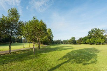 Beautiful green golf  and meadow at the park