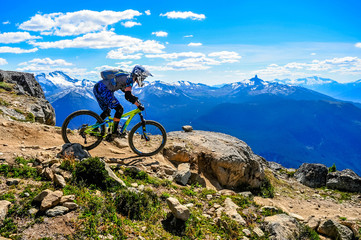 Whistler Mountain Bike Park, BC, Canada - Top of the wolrd trail, July 2016 Wall mural